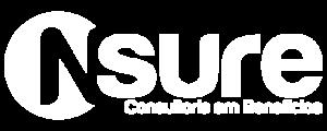NSure Consultoria em Soluções • BE SURE!